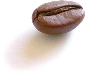 coffee_bean.jpg