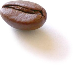coffee_bean2.jpg